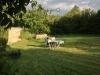 Die letzten Sonnenstrahlen genießen im Garten des Ferienhauses