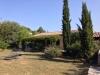 Das Ferienhaus im Juli - herrlicher Schatten unter der Pergola mit wildem Wein