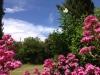 Der Garten um das Ferienhaus