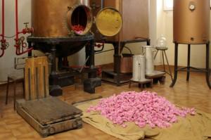 Destille zur Parfümherstellung