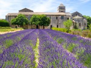 Saint-Paul-de-Mausole, Saint-Rémy-de-Provence